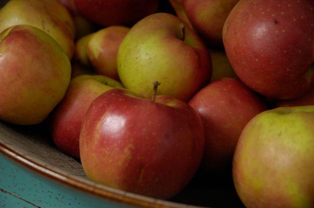 apples, produce, nova scotia