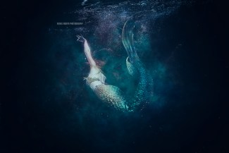 mermaid_mg_0527_1web