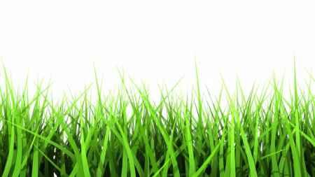 Simply Lawn Cutting Wilmington De
