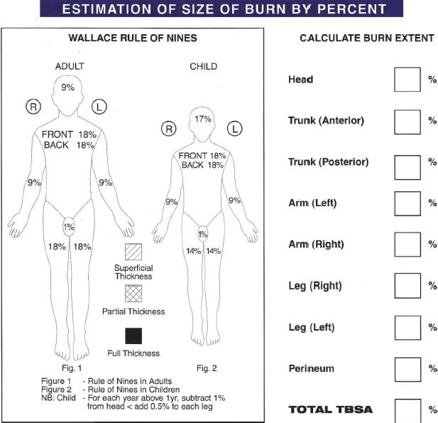 Burn Injuries Thoracic Key