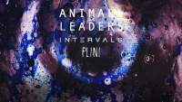 Concours Animals As Leaders @ Toulouse