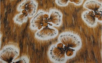 brown-hawaiian-print-pattern