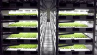 The Japanese lettuce production company Spread believes the farmers of the future will be robots. So much so that Spread is creating the world's first farm manned entirely by robots. Instead of relying on […]