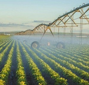 Precision Irrigation Systems Market will be Growing at a CAGR of 13% during the forecast period from 2016 to 2023