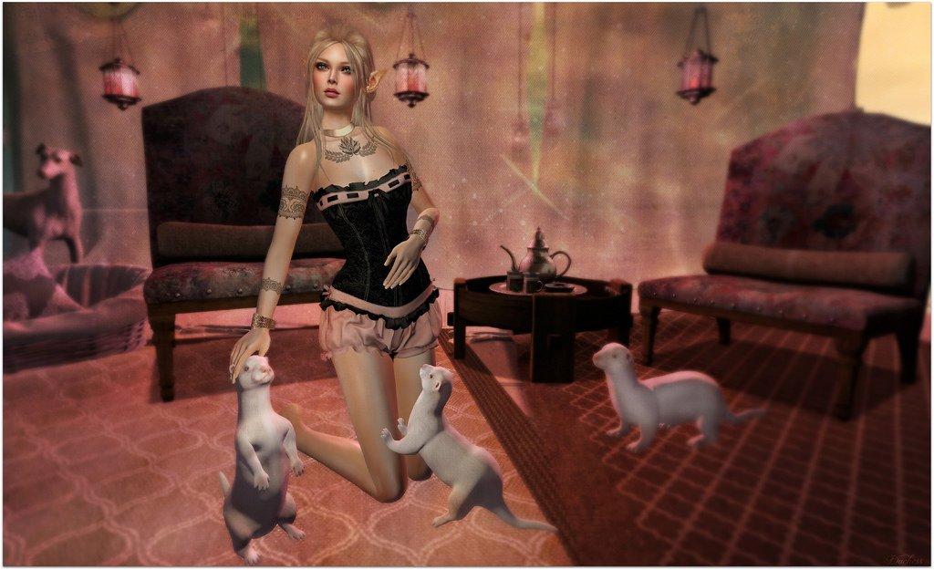 Minuet & the Weasels