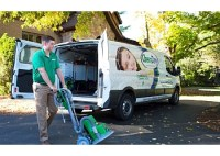 3 Best Carpet Cleaners in Lafayette, LA - ThreeBestRated