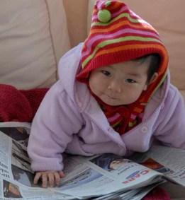 Li Li Paper