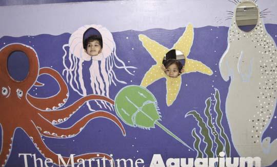 maritime-aquarium-8.jpg