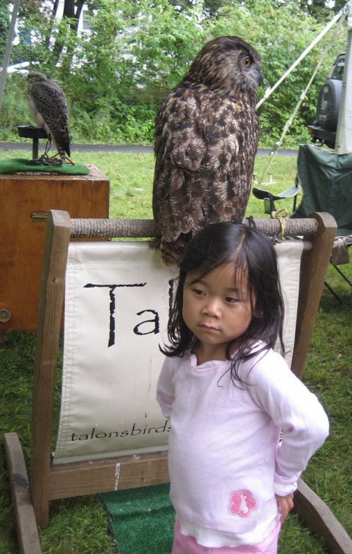 Li Li was a little scared by the owls at first.