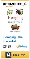 foraging forager free food forage foraging the essential guide