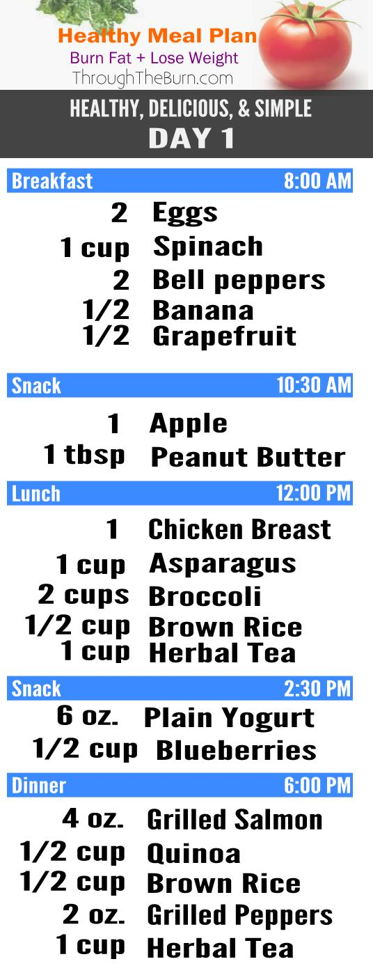 Healthy, Delicious Meal Plan to Burn Fat  Loose Weight - healthy meal plan