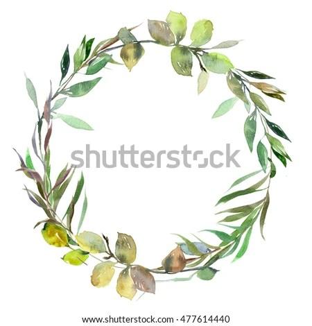 Pink Feathers Falling Wallpaper Watercolor Green Leaves Wreath Leaf Boarder Stock