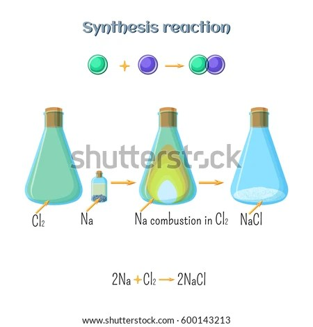 Synthesis Reaction Sodium Chloride Formation Sodium Stock Vector - synthesis reaction