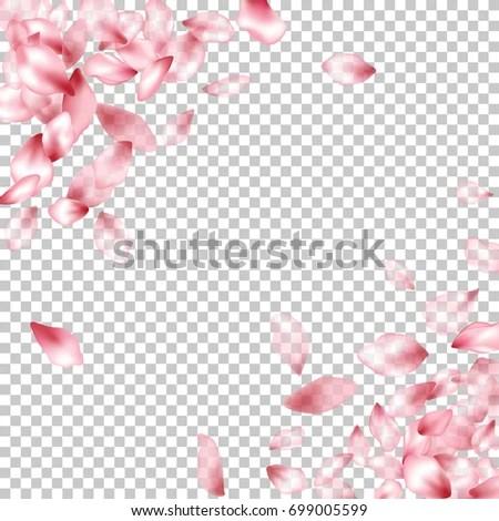 Falling Cherry Blossoms Wallpaper Pink Flower Petal Confetti Vector Corners Stock Vector