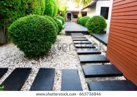Black Rocks Walking Way Tropical Garden Foto de stock ...