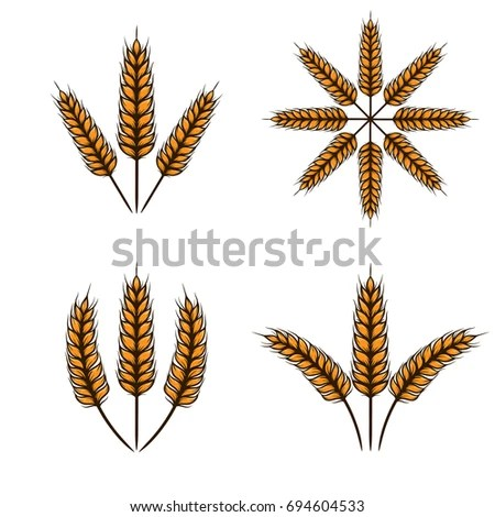 Wheat Vector Template Stock Vector 694604533 - Shutterstock - wheat template