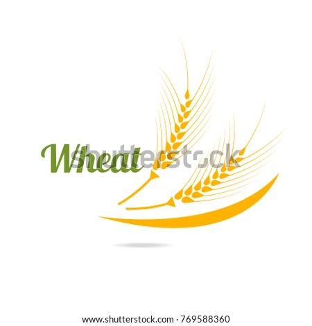 Logotype Template Wheat Wheat Ears Isolated Stock Illustration - wheat template