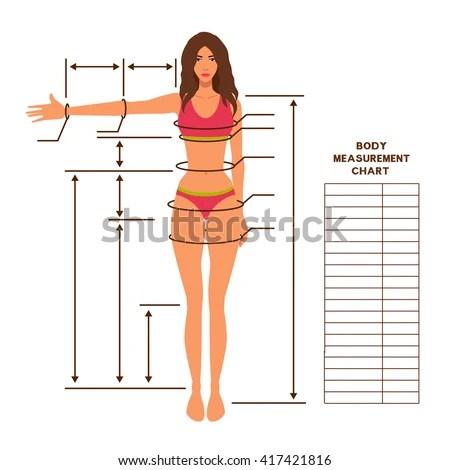 Woman Body Measurement Chart Scheme Measurement Stock Vector HD