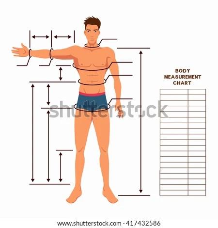 Male Body Measurement Chart Scheme Measurement Stock Vector