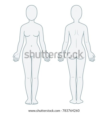 Nude Female Body Front Back View Stock Illustration 783764260