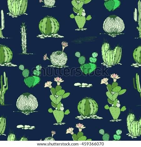 Succulent Type Plant Stockbilder, Royaltyfria Bilder Och