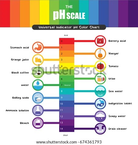 P H Scale Universal Indicator P H Color Stock Vector 674361793 - ph chart