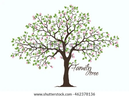 family tree image - Towerssconstruction
