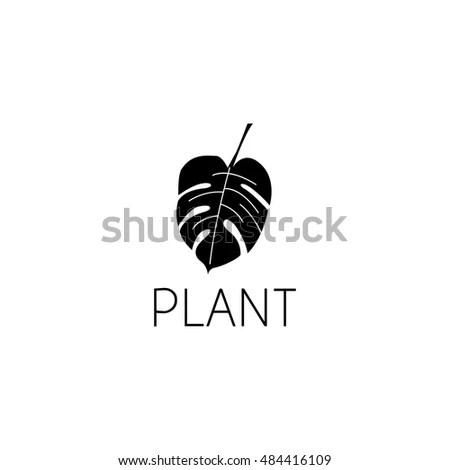 Leaf Logo Graphic Design Concept Editable Stock Vector 484416109