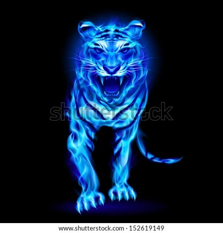 Fast And Furious Cars Wallpaper Free Download Blue Fire Tiger Isolated On Black Stock Vector 152619149