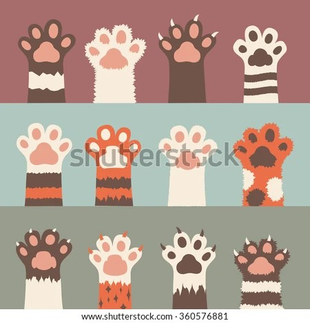 Cute Mustache Wallpaper Cat Stock Images Royalty Free Images Amp Vectors Shutterstock