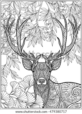 Coloring Page Deer Forest Coloring Book Stock Vector (Royalty Free
