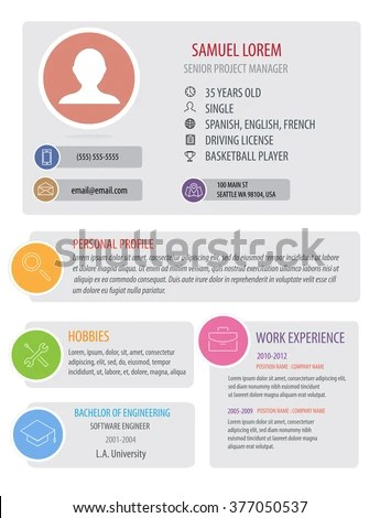 Perfect Resume Template Woman Light Color Stock Vector 377050537 - the perfect resume template