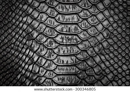 3d Curved Wallpaper Fancy Pattern Stock Photos Images Amp Pictures Shutterstock