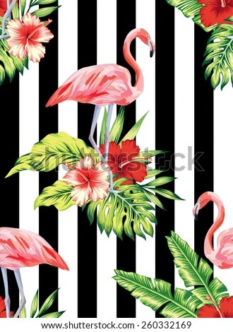 Cute Zig Zag Wallpapers 火烈鸟 Stock Photos Illustrations And