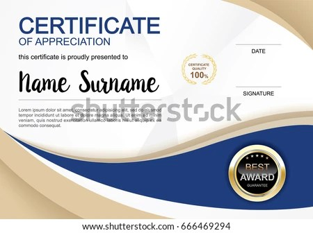 Certificate Template Clean Modern Diploma Official Stock Vector