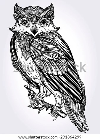 Cute Owl Cartoon Wallpaper Owl Drawing Stock Photos Royalty Free Images Amp Vectors