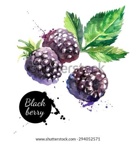 Falling Leaves Wallpaper Blackberry Blackberry Stock Images Royalty Free Images Amp Vectors