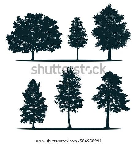 Tree Silhouettes Green Oak Maple Poplar Stock Vector (Royalty Free