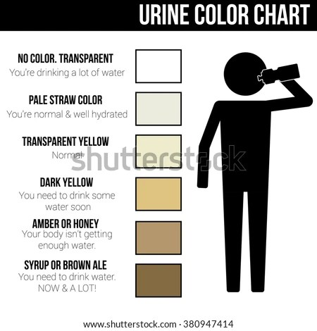 Urine Color Chart Icon Symbol Sign Stock Vector (Royalty Free