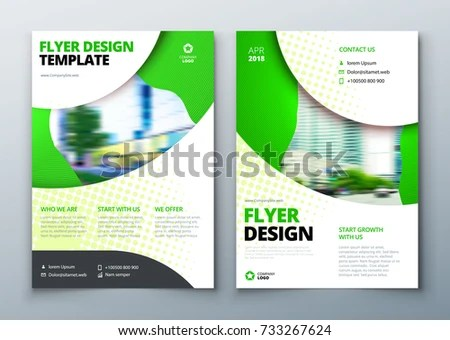 Flyer Template Layout Design Business Flyer Stock Vector 733267624