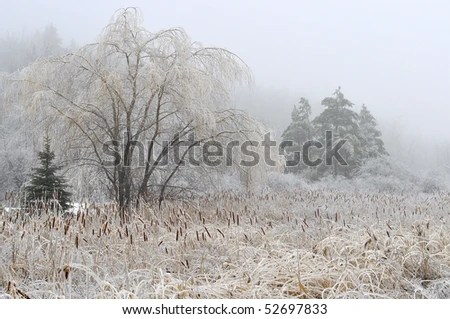 Frosty Fall Fields Wallpaper Freezing Rain Stock Images Royalty Free Images Amp Vectors