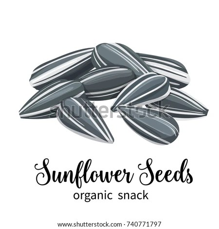Vector Sunflower Seeds Cartoon Style Template Stock Vector 740771797 - packing label template