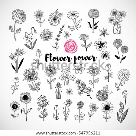 Black And White Rose Wallpaper Flower Doodle Stock Images Royalty Free Images Amp Vectors