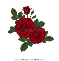 Beautiful Bouquet Red Roses Leaves Floral Stock Vector