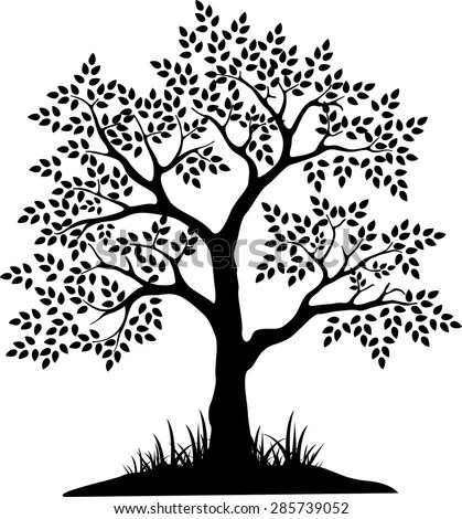Black Tree Silhouette Your Design Stock Photo (Photo, Vector