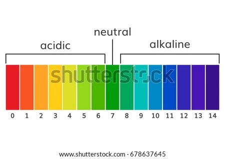 Chart Ph Alkaline Acidic Scale Vector Stock Photo (Photo, Vector - ph chart