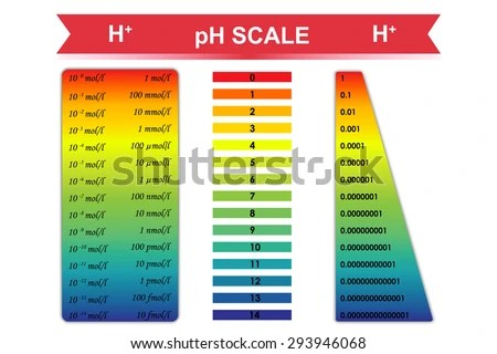 P H Scale Chart Corresponding Hydrogen Ion Stock Vector HD (Royalty