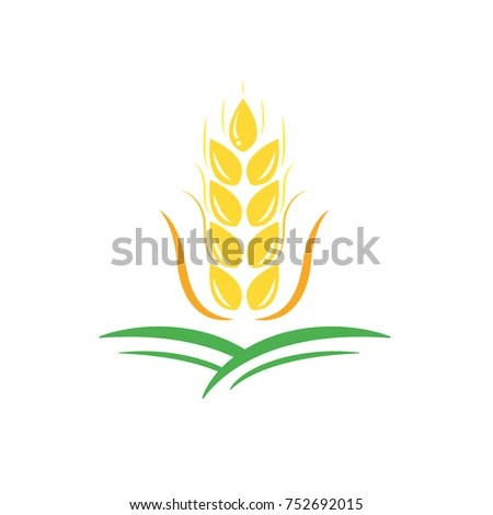 Agriculture Wheat Vector Logo Template Icon Stock Vector 752692015 - wheat template