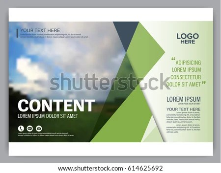 Presentation Layout Design Template Annual Report Stock Vector