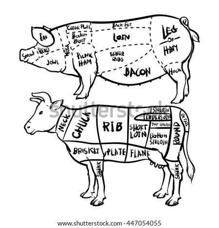 Simple Cow Meat Cut Diagram - Opinions About Wiring Diagram \u2022